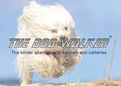 The Dog Walker Franchise Opportunities